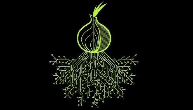 ICYMI: The Tor Enigma