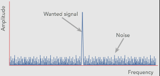 Daily Dose: Signals VS Noise