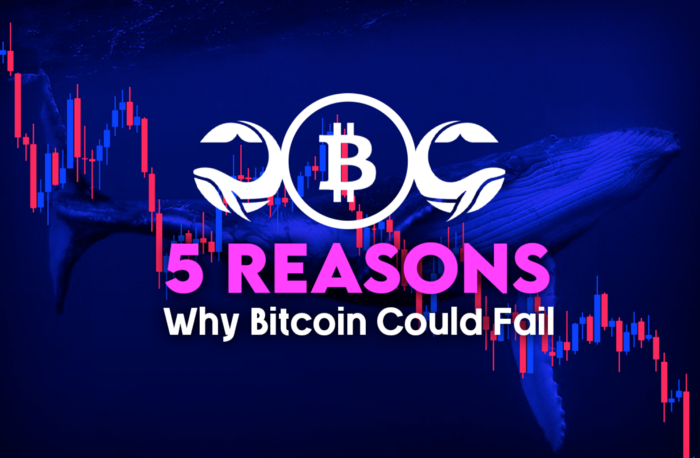 5 Reasons Why Bitcoin Could Fail, and Soon Witness a -99% Correction.
