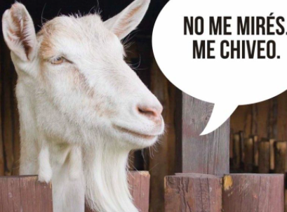 Daily Dose: Chivo Means G.O.A.T.